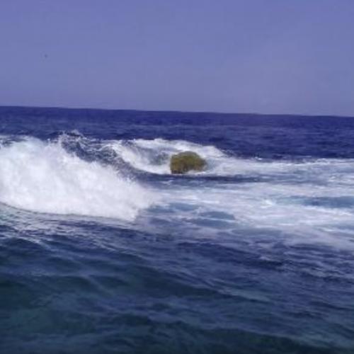 La Secca della Formica, la montagna nel mare di Porticello